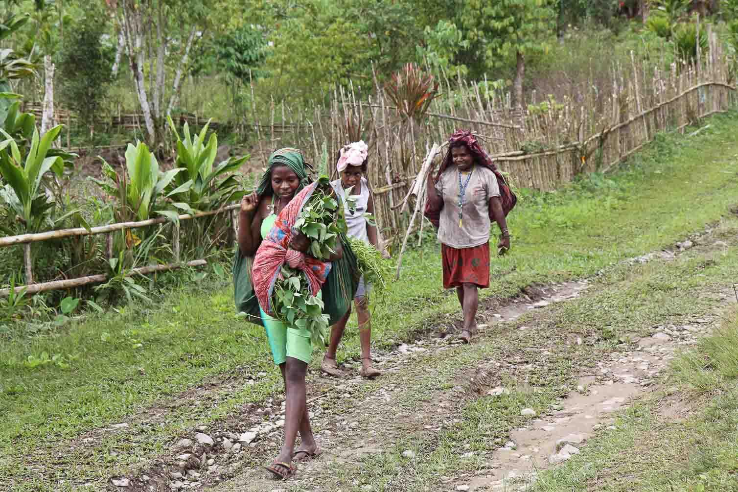 dorfbewohner im arfakgebirge