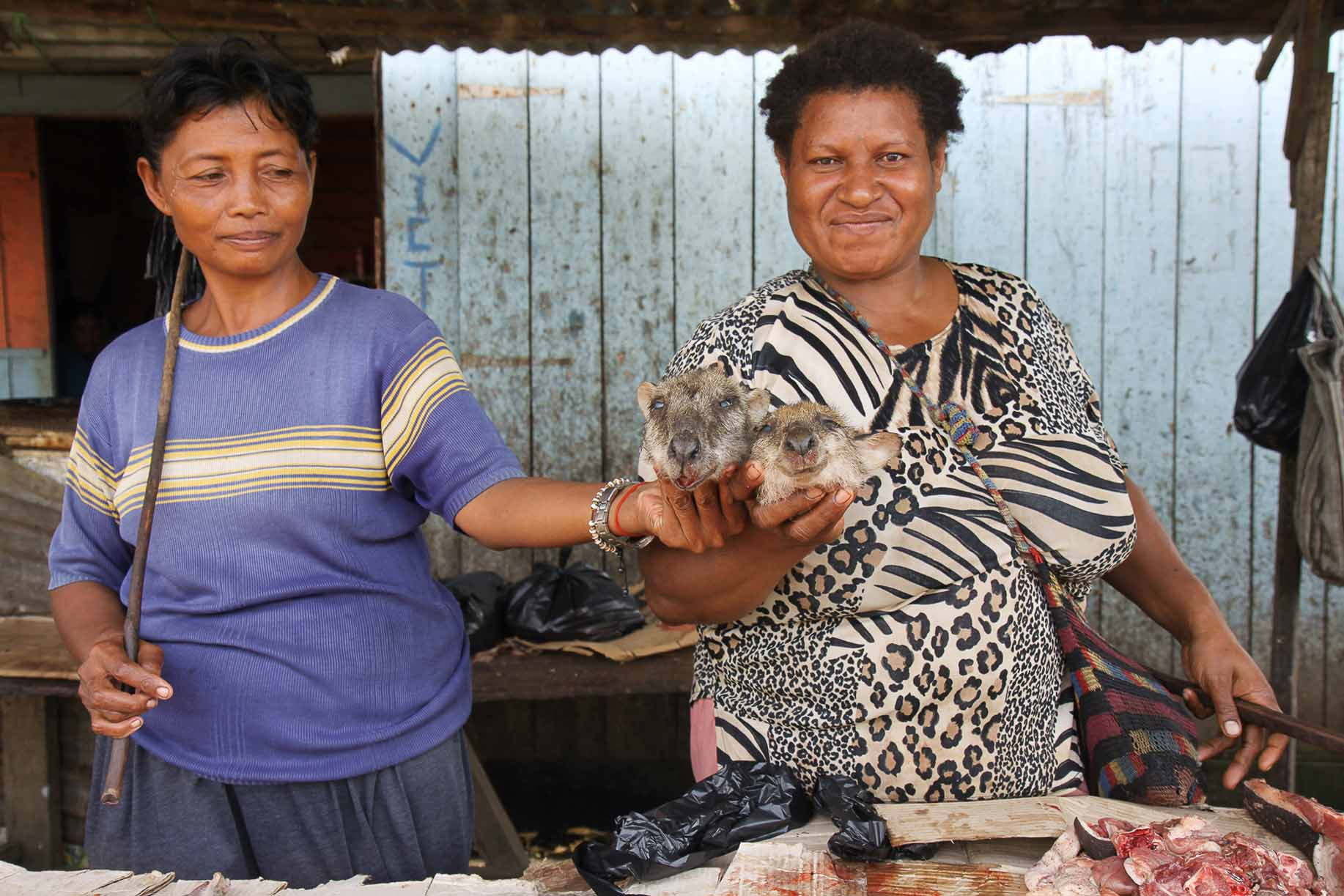 Kängurus auf dem Markt