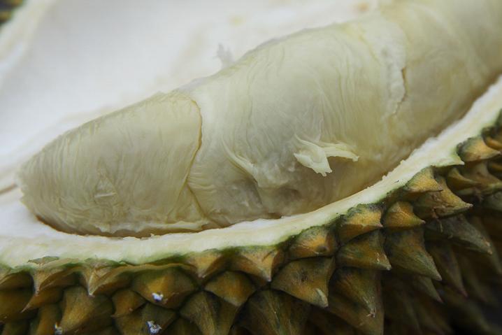 Lecker Durian in Ambon