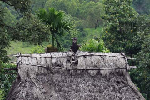 Dach eines traditionellen Hauses