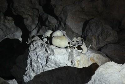 Schädel in Höhle