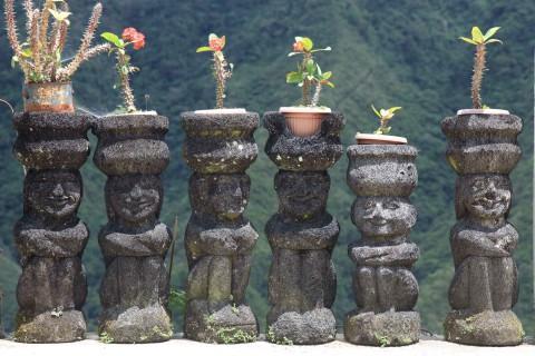 Schicke Blumentöpfe
