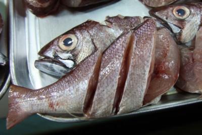Auf dem Fischmarkt von Puerto Princesa