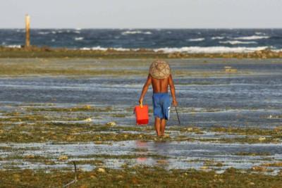 Auf der Suche nach Seafood